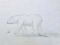Arctic-Animal-Roni-